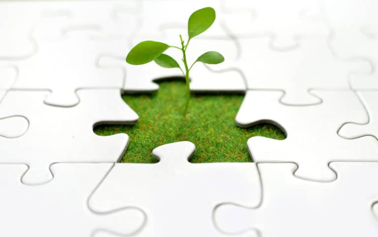 A puzzle with one piece missing and a small plant sprout growing through it, representing a lead magnet